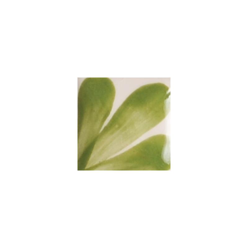 OS129 OLIVE GREEN flacon de 30 ml