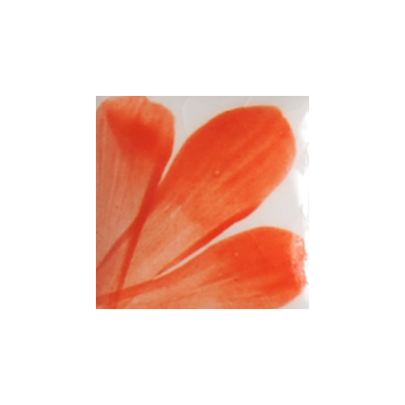 OS037 PERSIMMON flacon de 30 ml