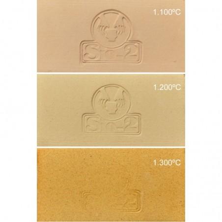GRES ROUX  PRGI 0,2 mm 960-1280°C Condit.12.5 kg - 1 - Terre Grès