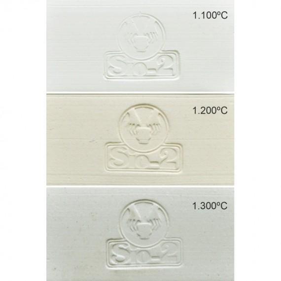 GRES BLANC PRAI 0.2 mm 960-1280°C Condit.12.5 kg - 1 - Terre Grès