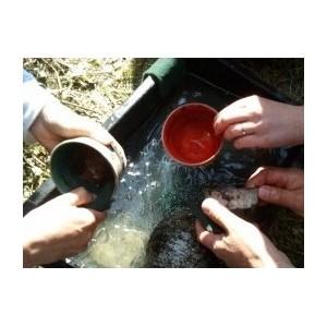 Matériaux, outils et fours pour le Raku